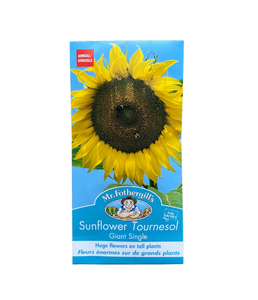 "Mr. Fothergill's - Tournesol ""Giant Single"""