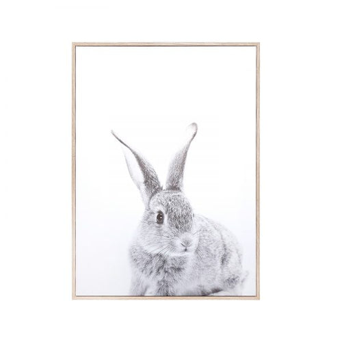 Canvas Wall Decor – Rabbit