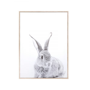 Toile – Lapin