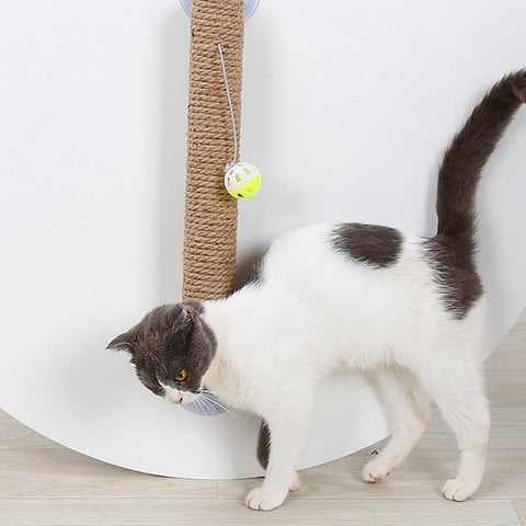 Pet Scratch Pad Board Cat Toys Sisal Cat Scratching Post Toy Cat Practical Window Suction Cup Cat Climbing Tree With Bell Ball