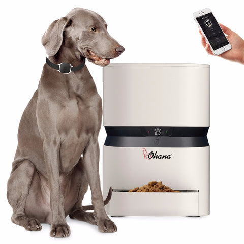 8L Automatic pet feeder  USB Charge Capacity Smart Keep Puppy Dog Cat Healthy Programmable Timer Portion Foods Dispenser For Dog
