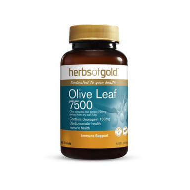 Olive Leaf 7500 by Herbs of Gold