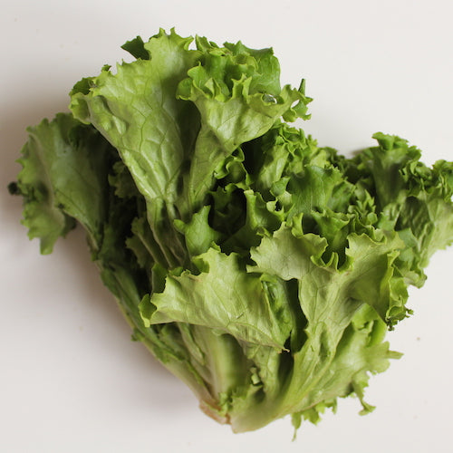 Lettuce - Green Leaf (Each)