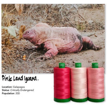 Load image into Gallery viewer, Aurifil Color Builders 2021 - Pinkki Iguana ompelulankapaketti