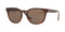 VO5271S - 238673 Top Dark Havana/Light Brown - EyecareatHome