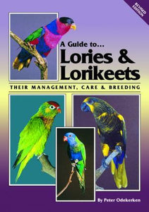 A Guide to Lories & Lorikeets