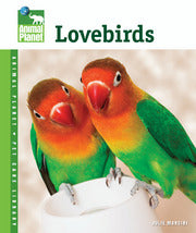 Animal Planet: Lovebirds