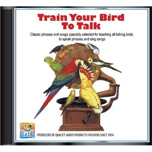 Train Your Bird To Talk