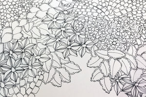 Patterns of Flora Colouring Book