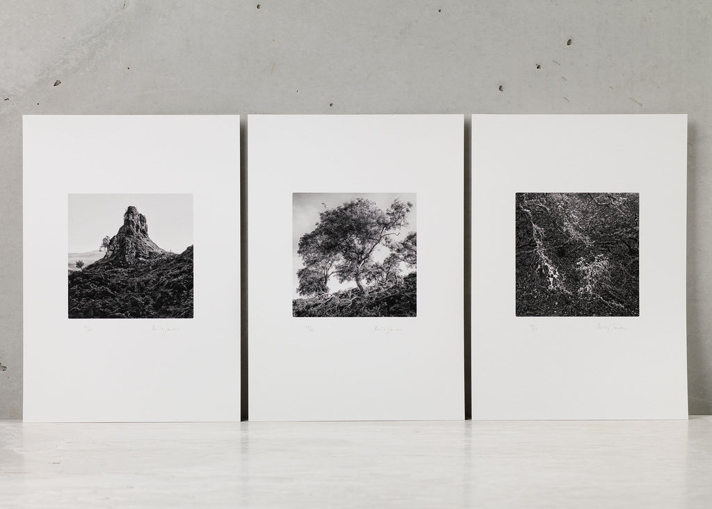 Within view, Set of three prints | René Jansen