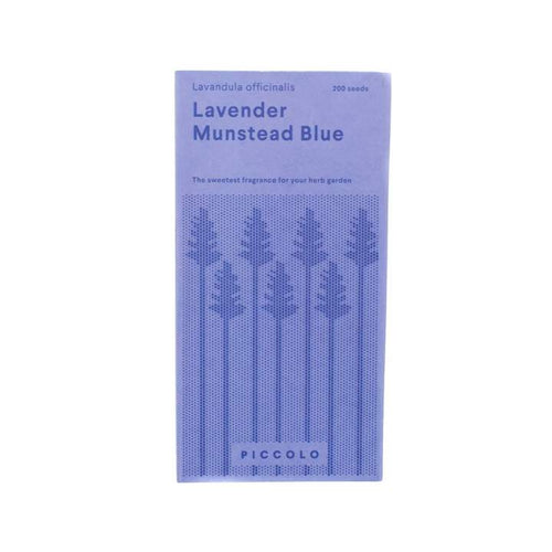 Lavender Munstead Blue Seeds