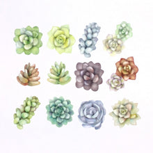 Load image into Gallery viewer, Washi Tape Succulent Stickers