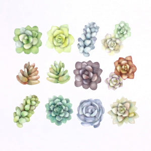 Washi Tape Succulent Stickers