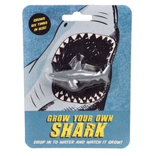 Load image into Gallery viewer, Grow Your Own Shark