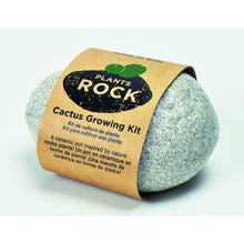 Load image into Gallery viewer, Grow Your Own Cactus-Light Grey Rock