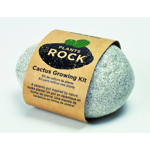 Grow Your Own Cactus-Light Grey Rock