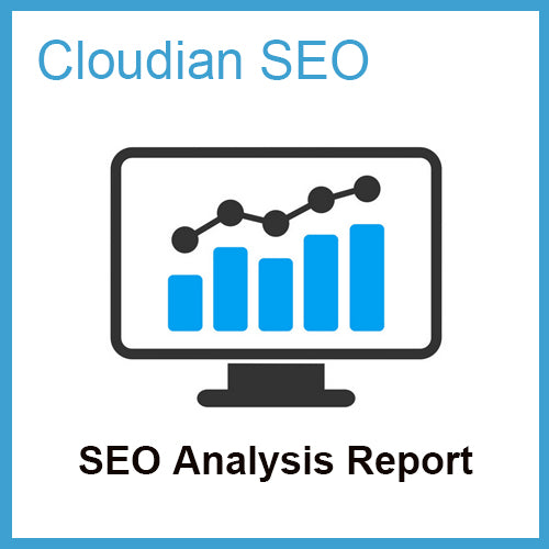 SEO Analysis Report
