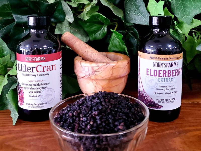 Elderberry Health