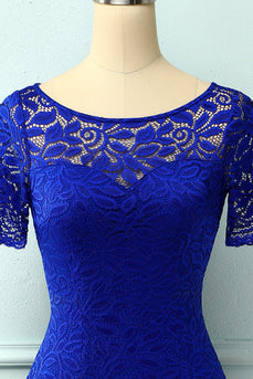 Royal Blue Bodycon Lace Dress