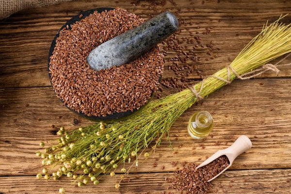 Sprouted Flax and Benefits: