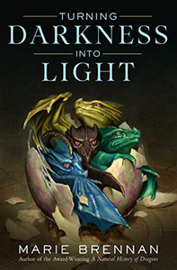Turning Darkness Into Light (Hardcover)