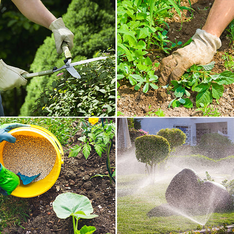 (Different ways of maintaining Hedges)