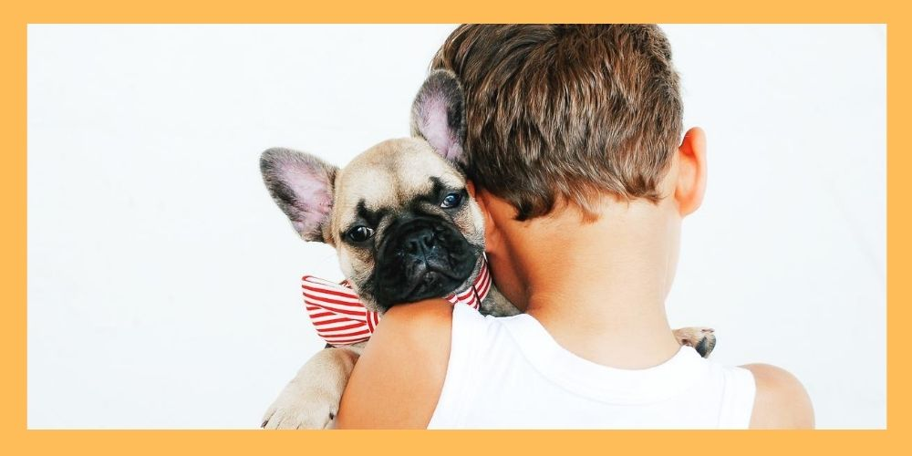 Young boy holding dog with bowtie