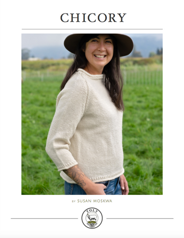 Chicory Pullover, PDF Download