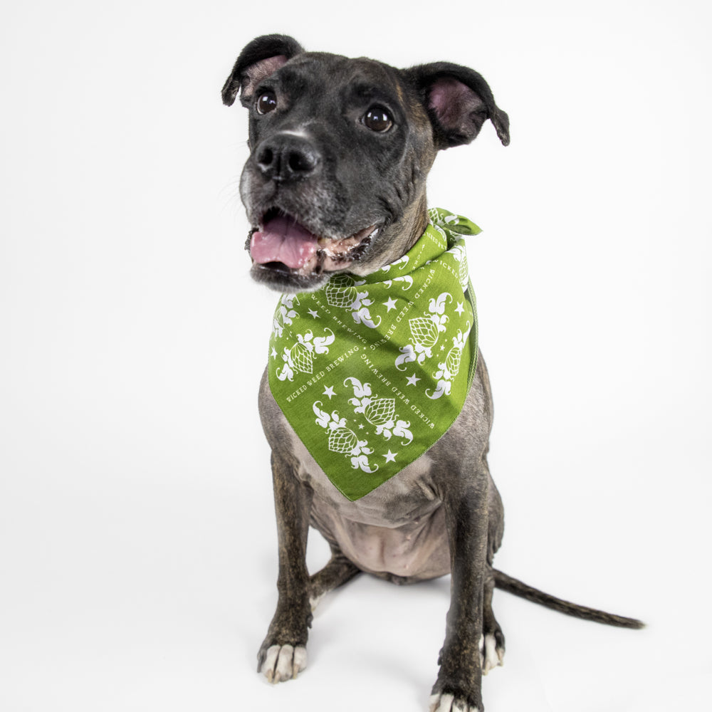 Wicked Weed Hop Bandana