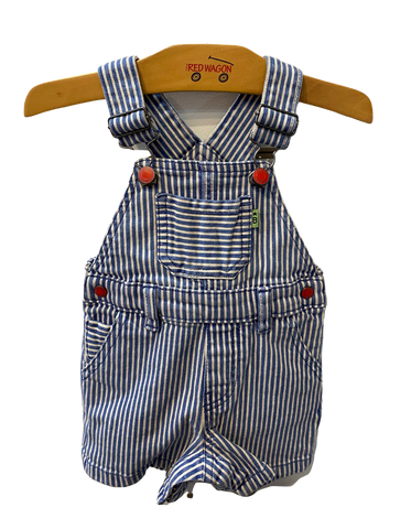 Denim Striped Overalls