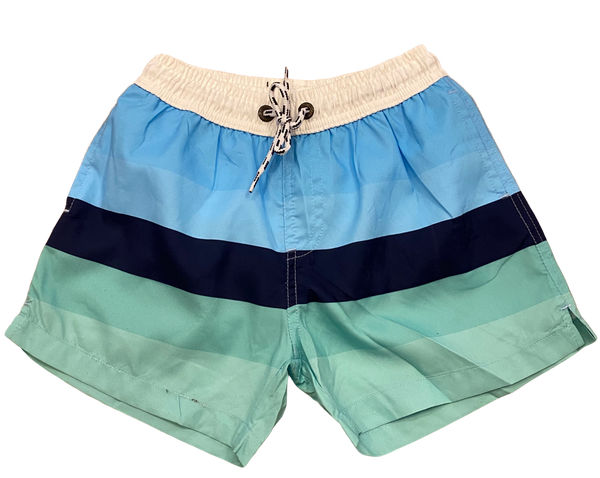 Blue and Green Striped Swim Shorts