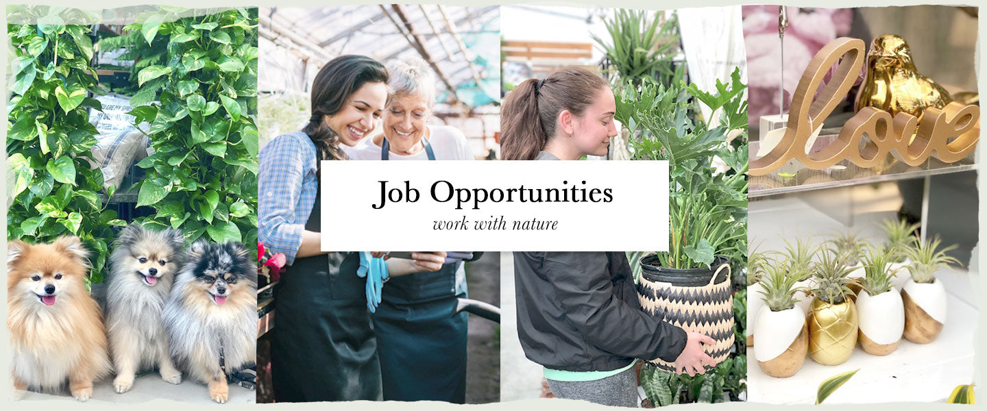 Job Opportunities - work with nature at Vandula Farms