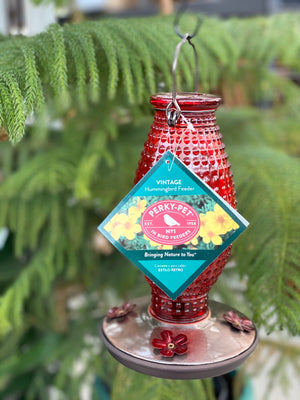 PerkyPet Red Hummingbird Feeder