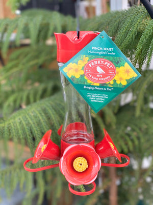 Perky Pet Glass Hummingbird Feeder - Small