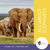 All About Elephants Grades 3-4 book