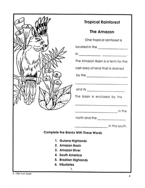 All About Tropical Rainforests Grades 4-6