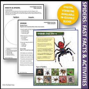 Insects & Spiders Activities & Colour Reading Folder Gr 3-4+ Google Slides Distance Learning