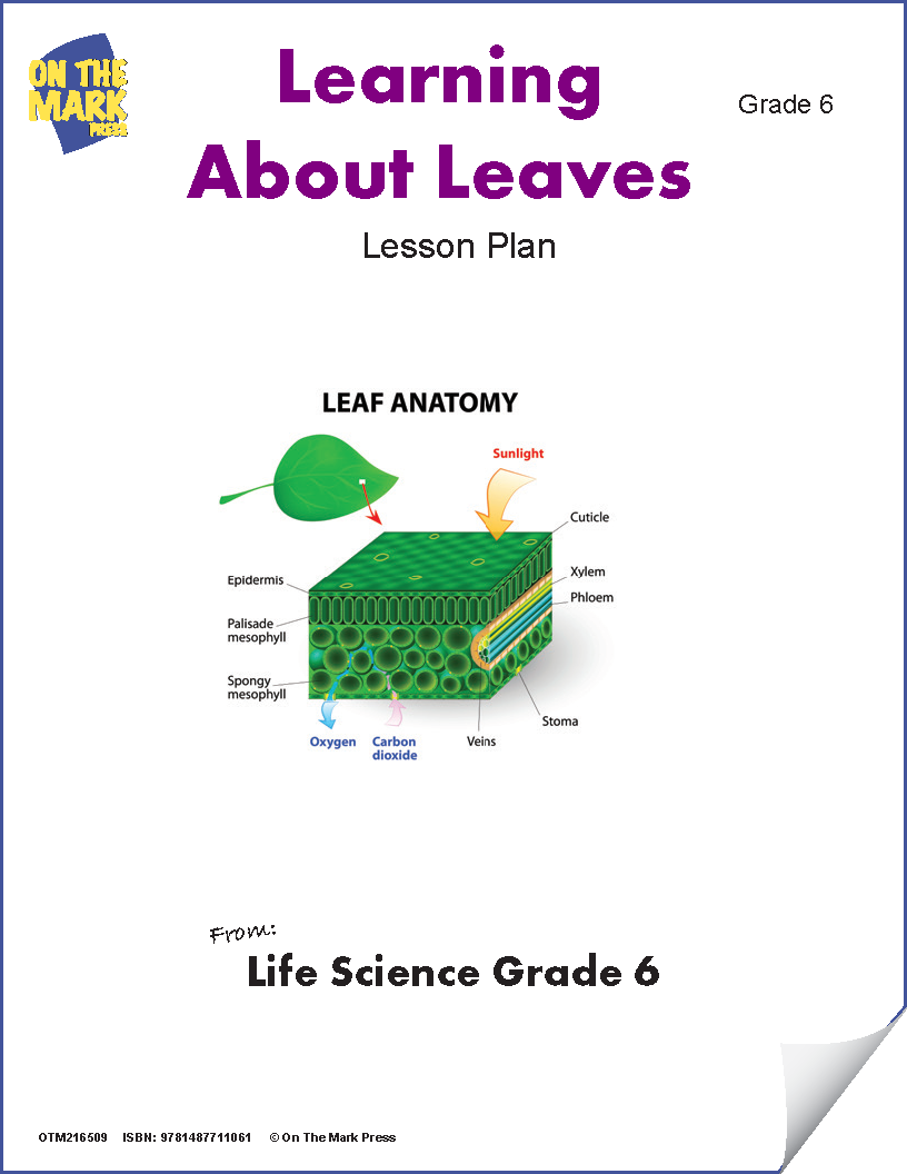 Learning About Leaves Grade 6 (eLesson Plan)