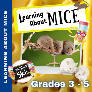 Learning About Mice Grade 3-5