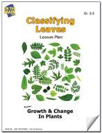 Classifying Leaves Activities Grades 2-3