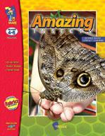 Amazing Insects Grades 4-6
