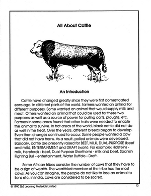 All About Cattle Grade 5-7