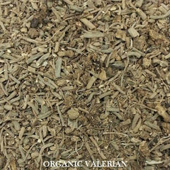 Herbal Tea - Organic Valerian Root