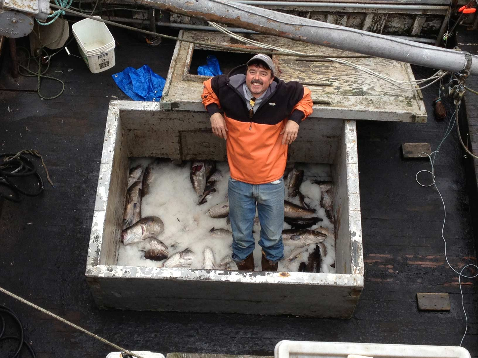 Kodiak Fisherman, Darius Kasperzak, swimming in Pacific cod - circa 2013