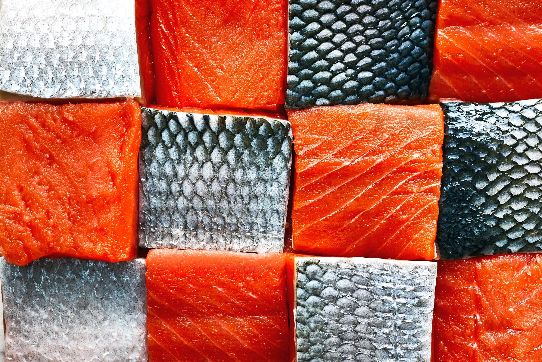 Now's the Time to Order Mass Quantities of Wild Alaskan Salmon Online Video