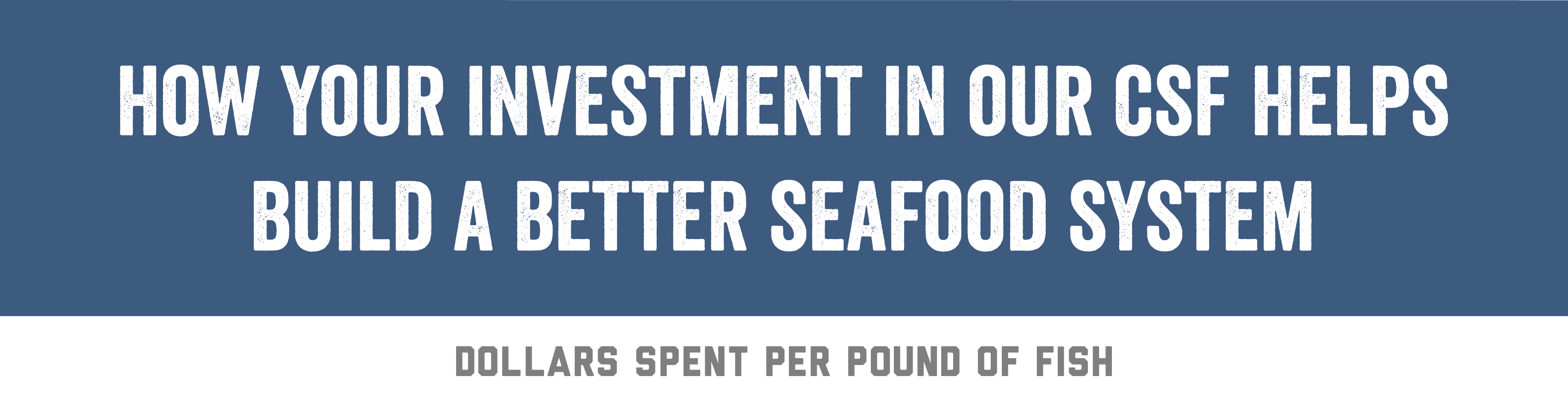 How Your Investment In Our CSF Helps Build A Better Seafood System | Dollars Spent Per Pound Of Fish