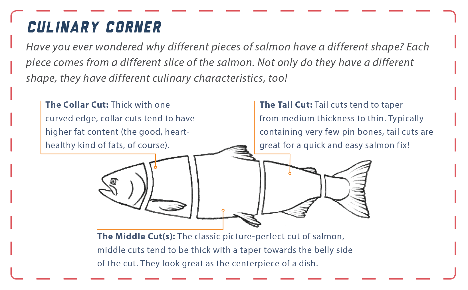 Infographic displaying different cuts of fish