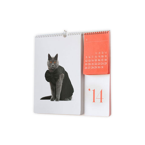 Cat Calendar 2014 by Catclub