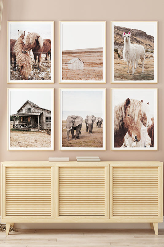 'Grassland Wildlife' Cotton Canvas Print