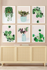 'House Plants I' Cotton Canvas Print